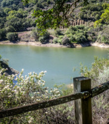 Stevens Creek Reservoir trails